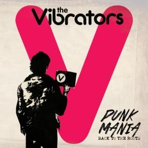 2009 Vibrators med res
