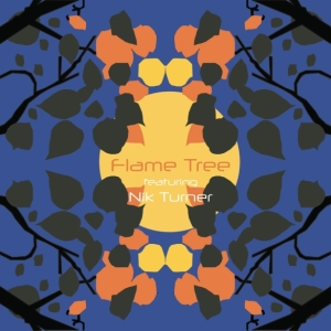 0298 FlameTree CD copy med res