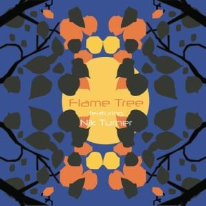 0298 FlameTree CD copy med res