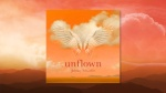 Johnny Schaefer – Unflown medres