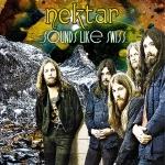 Nektar – Sounds Like Swiss cover medres
